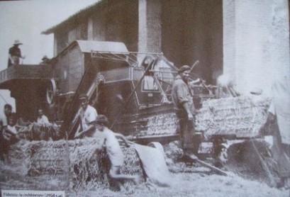 Dintorni - trebbiatura a Fidenza (1938)