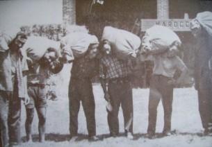 la trebbiatura (1950)